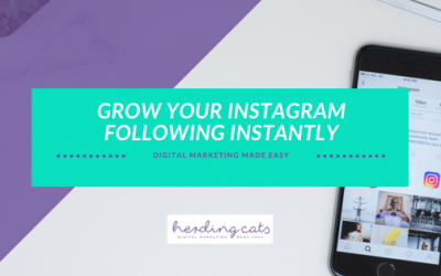 Tips to Grow Your Instagram Following